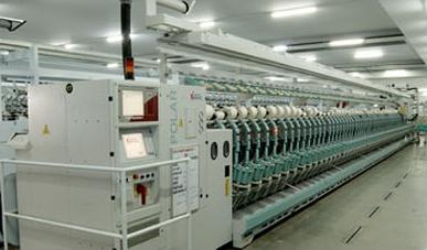 Bannari Amman Spinning Mills Ltd |